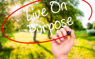 Living On Purpose #1